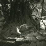 Rudrashtakam di Goswami Tulsidas (Rudra Ashtakam)