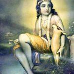 Sri Krishna Janmashtami: Bhagavad Gita cap. X – XI, la gloria del Supremo, la visione di Arjuna.