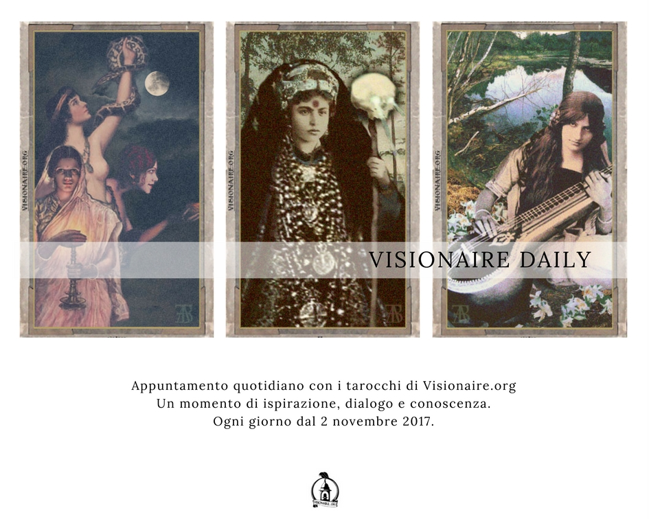 Visionaire Daily (1)